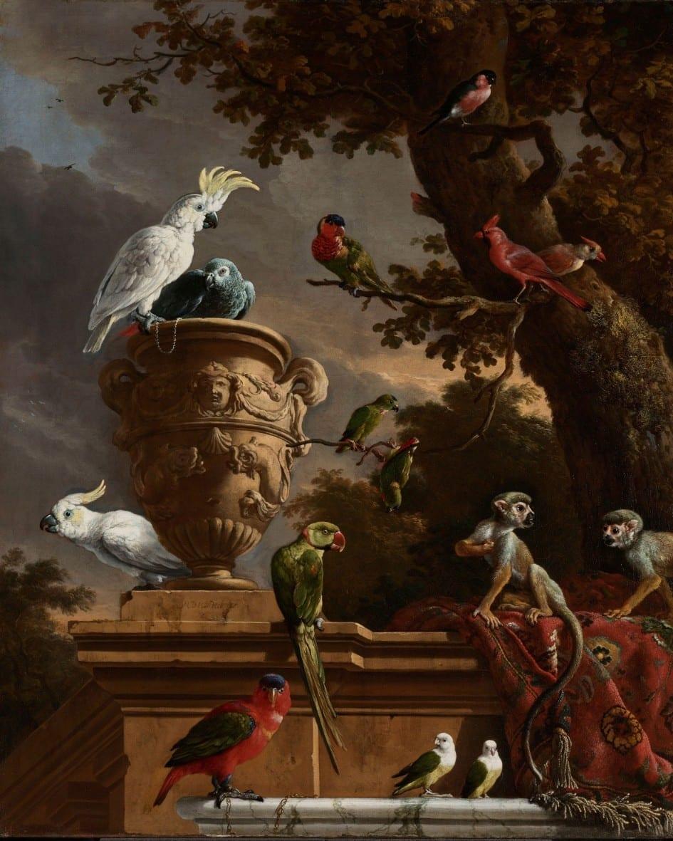 De menagerie - Melchior d'Hondecoeter